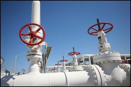 petroleum-pipe-seal-urethane