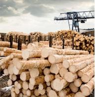 polyurethane-lumber-machinery