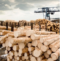 Polyurethane Lumber Machinery