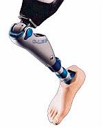FDA approved polyurethane artificial leg